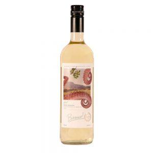Vinho Vino Branco